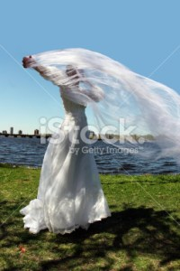 stock-photo-564419-bride-outdoors