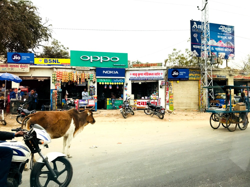 24Feb18Udaipur2