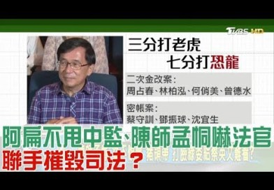 陳師孟第一案 要辦2009年司法官「諷扁劇」