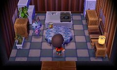 Lolly - Nookipedia, the Animal Crossing wiki on Animal Crossing Kitchen Island  id=63620