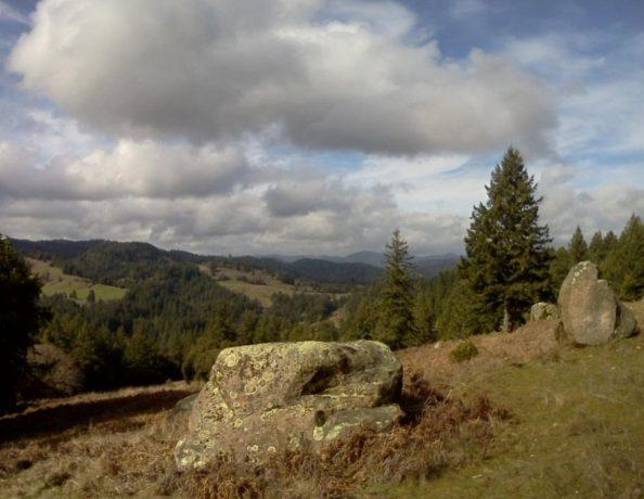 Matole River Rocks