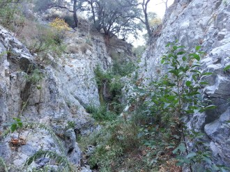 Pickens Canyon 02