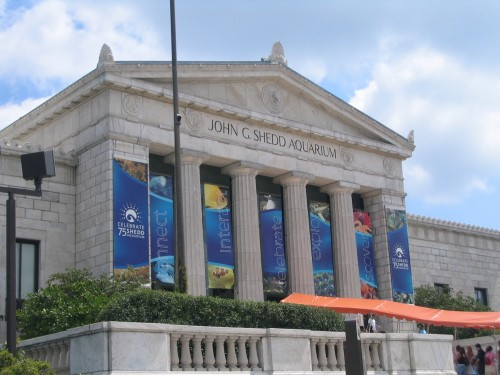 https://upload.wikimedia.org/wikipedia/commons/4/4d/Shedd_Aquarium_Chicago_August_2005.jpg