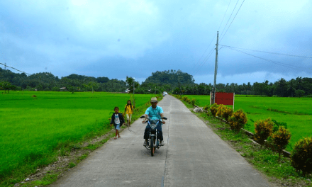 P50.24-M road, bridge bring farmers' products to markets