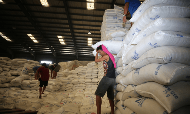 We Have Enough Rice for NCR — DA-NFA