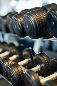 training-weights-strength