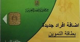 بوابة مصر الرقمية لإضافة المواليد