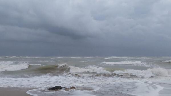 قوة اعصار شاهين