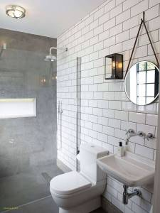 Bathroom Remodel Ideas Awesome Lovely Outdoor toilet