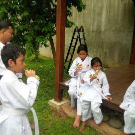 karate(17)