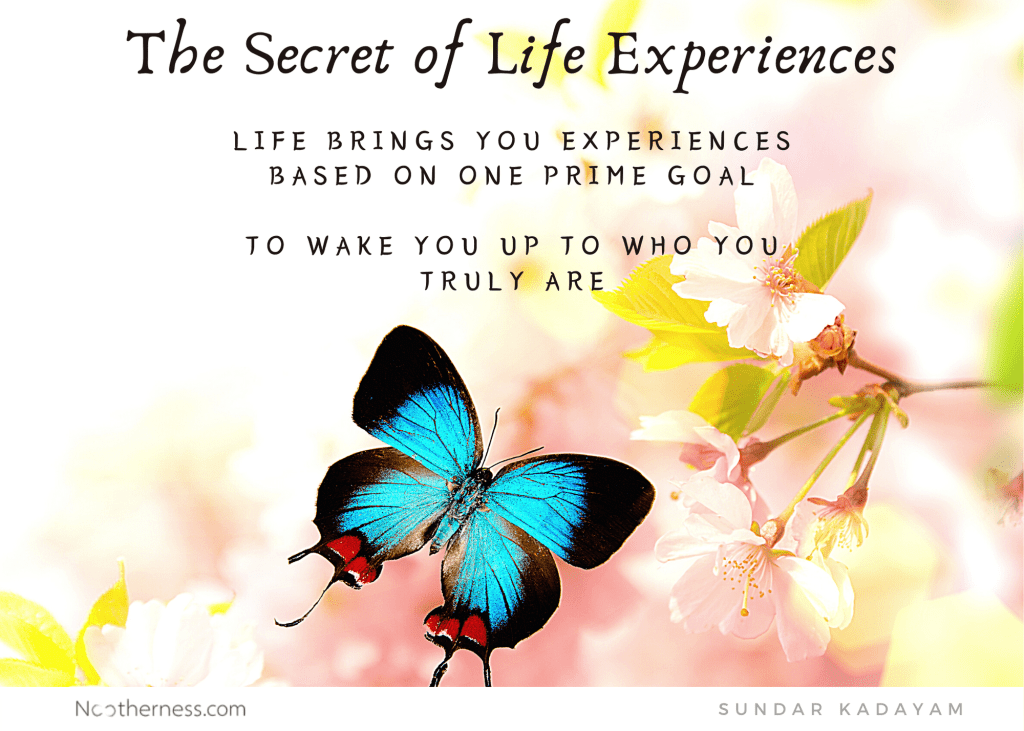 What is the secret of life experiences?