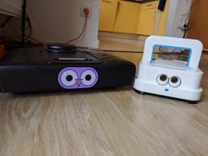 Eyes 3D Print for Home Cleaning Robots