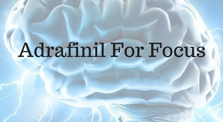 Adrafinil For Focus
