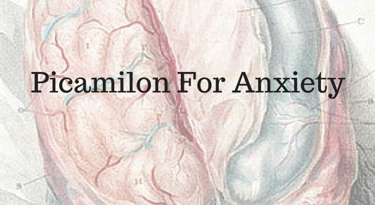 Picamilon For Anxiety