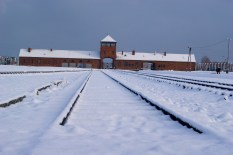 Train tracks leading out of Birkenau concentration camp
