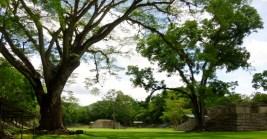 Copan Mayan Ruins