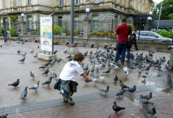 chasing and feeding pigeons - downtown plaza in San Jose