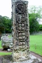 A stelae in Grand Plaza - Copan Mayan Ruins, Honduras