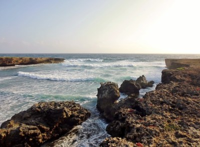 shoreline at Boca Ascension