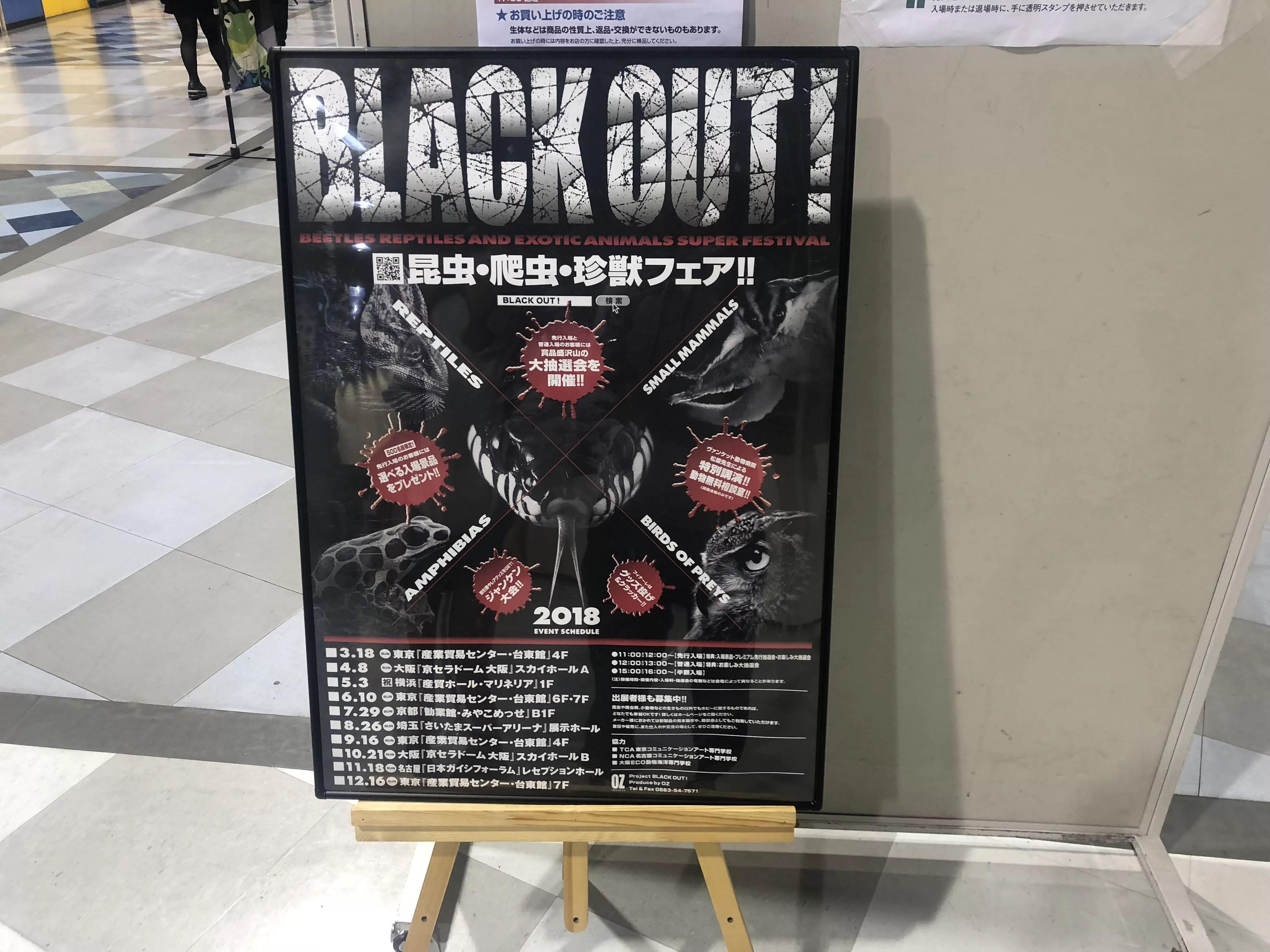 爬虫類イベントの珍獣フェア BLACK OUT!に行ってきました♪IN大阪