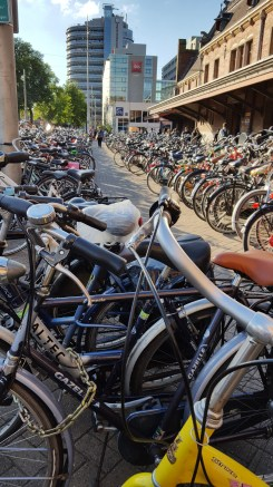 Bikes, bikes, always bikes.