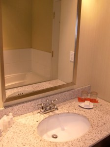 Bathroom seems new in that vacant apartment way.