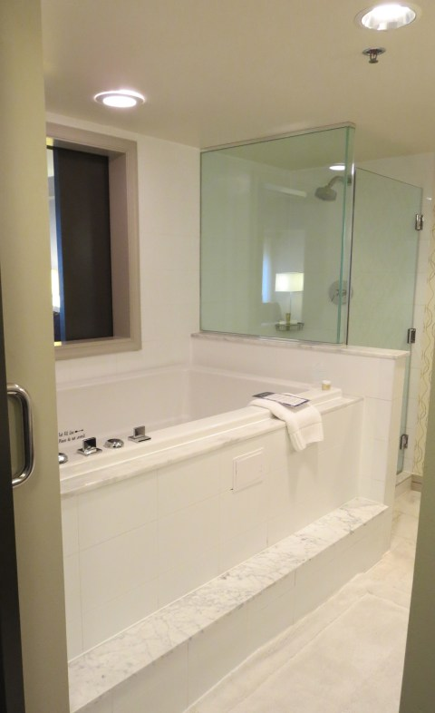 Glass shower cube next to a traditionally unused big old tub.