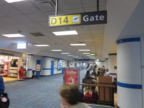Terminal D has a gorgeous drop ceiling.