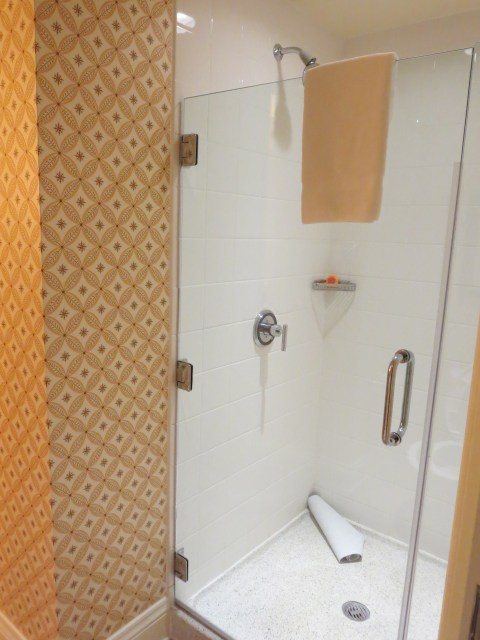 This shower hit the spot.  Plenty of hot water in a nice glass cube.