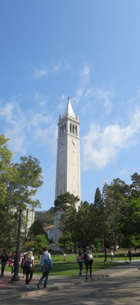 UC Berkeley Fossil Collection on High