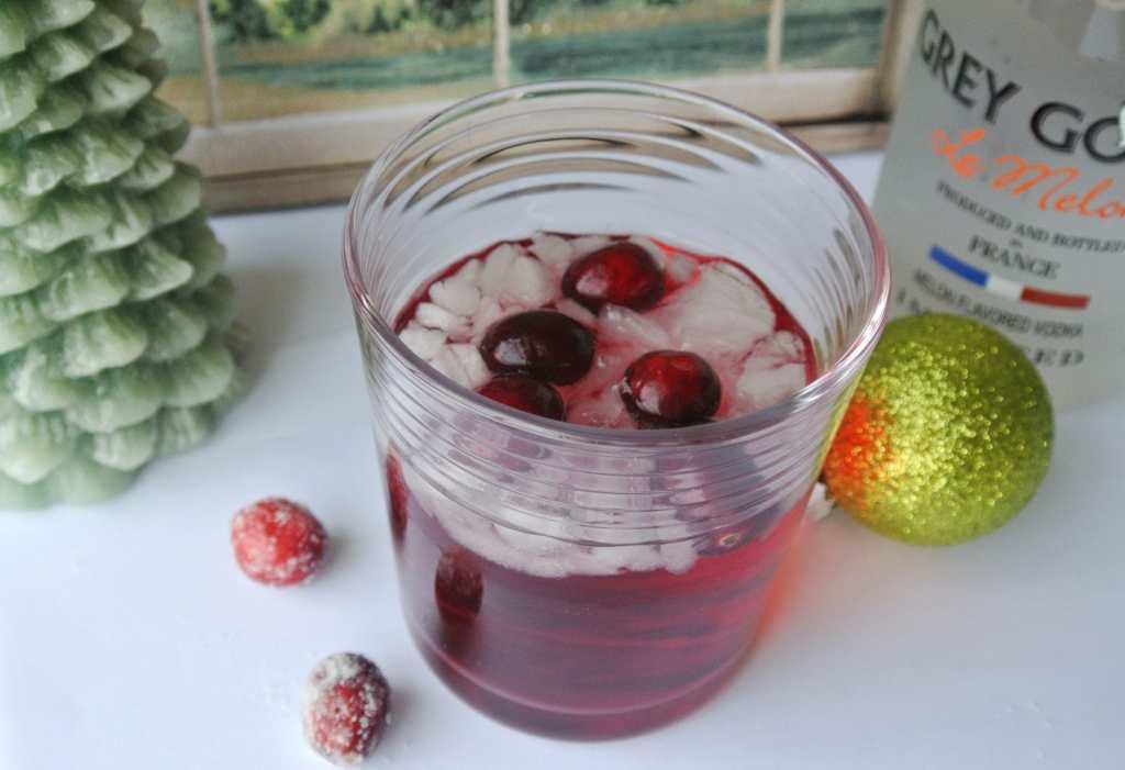 Cranberry Melon Vodka Tonic Cocktail with Grey Goose Le Melon Vodka
