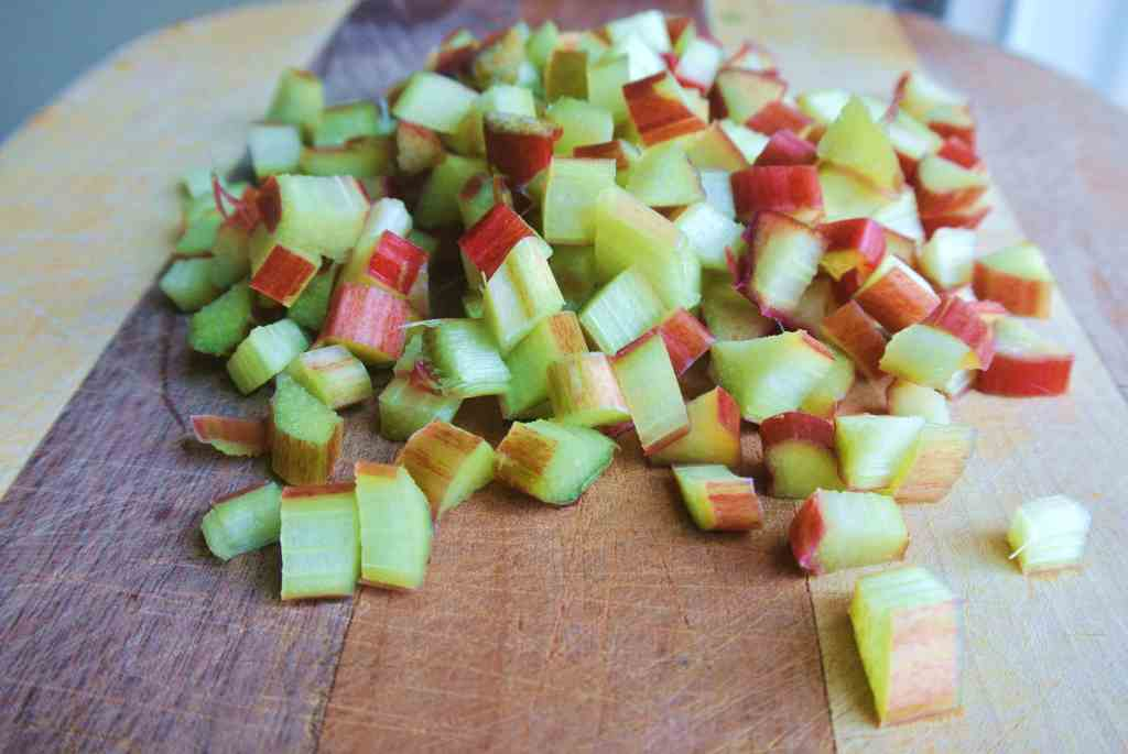 Rustic Strawberry Lemon Rhubarb Galette
