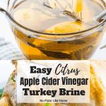 Citrus Apple Cider Turkey Brine Recipe