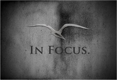 sigla-in-focus_resize