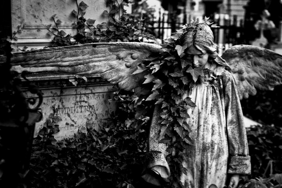 cimitirul_bellu_2016_32_resize