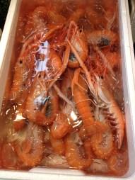 Big shrimp on sale at Tsukiji's wholesale market