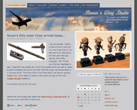Raven's Wing Studio website thumbnail.