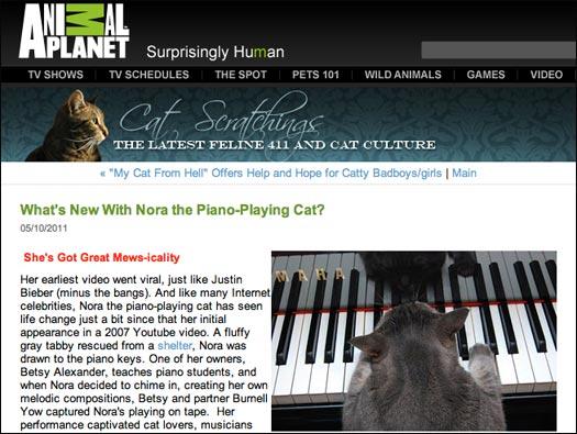Animal Planet - Cat Scratchings by Kathy Blumenstock