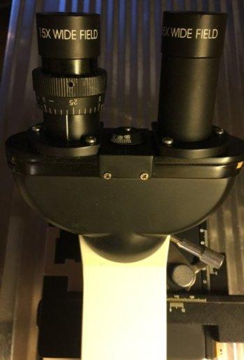 Mikroskop-07-Binokularhode