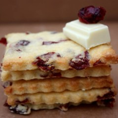 cranberry-chocolat-blanc