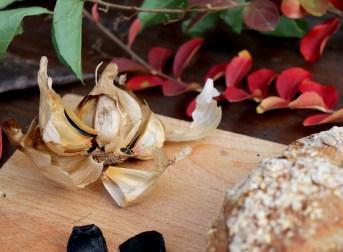 aglio-nero-voghiera