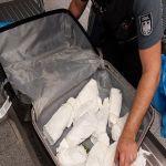 Zoll am Frankfurter Flughafen beschlagnahmt 75 Kilogramm Khat im Reiseverkehr