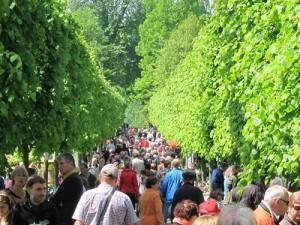 Pflanzenboerse-Botanischer-Garten-Kassel