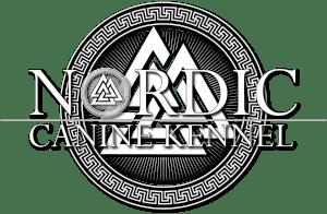 nordic canine-valknut4 w600