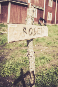 A sign warning about Rosen (The Rose), the plague killing off  the refugees (play, Sebastian Utbult).