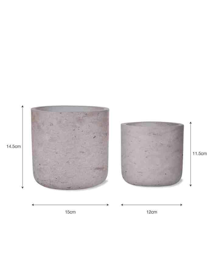 Concrete Plant Pots, Set of 2