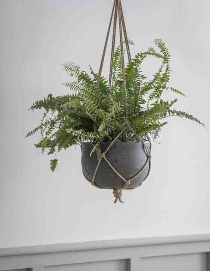 Carbon Hanging Plant Pot, Concrete