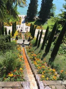 Vom Vechtesee zum Bodensee - Städtische Auszubildende arbeitete zwei Wochen auf der Insel Mainau - Das zweite Foto (Stevens) zeigt die beeindruckende Blumen-Wassertreppe auf der Insel Mainau. Foto: Stevens