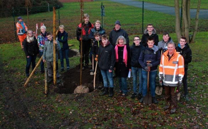 Durch eine Pflanzaktion am Mittwochvormittag der Oberschule Michaelschule, des RUZ und des NABU ist der Stadtpark nun um 15 Winterlinden reicher. Foto: Stadt Papenburg
