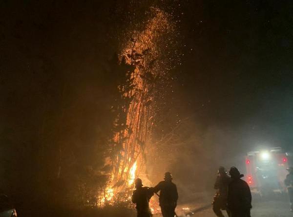 Zu einem gefährlichen Baum- und Heckenbrand kam es in der Neujahrsnacht in Sögel. Der Feuerwehr gelang es, ein Übergreifen auf ein Wohnhaus und weitere Hecken zu verhindern. Fotos: SG Sögel/Feuerwehr